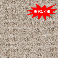 All the Rage Stainmaster Nylon Carpet 60% Off
